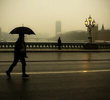 Gloom on Westminster Bridge by Rick  Senley