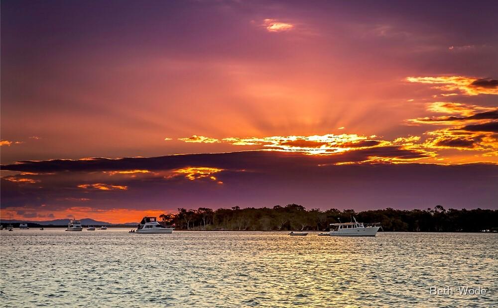 Tiger Mullet Sundown Near Jacobs Well Qld Australia by Beth  Wode