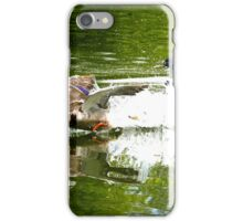 ducks taking off iPhone Case/Skin