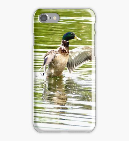 duck on beverley beck iPhone Case/Skin
