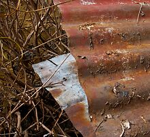 Rust Panels with Twigs by Vicki Simmons