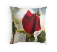 With The Sun's Love Throw Pillow