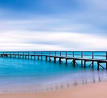 Shelly Beach Sunrise, Portsea by Darren Greenwell