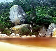 Whale Rock, Wilsons Promontory by Darren Greenwell