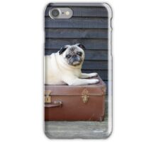 Big Personality, Small Package iPhone Case/Skin