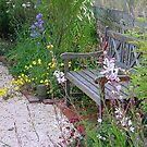 my cottage garden in its heyday by BronReid