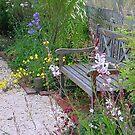 my cottage garden in its heyday by BronReid