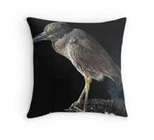 Galapagos Heron Throw Pillow