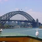 Sydney Harbour ferry ride by BronReid