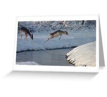 Jumping Fallow deer in the snow 4 Greeting Card