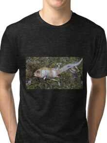 My goldfish has lost its color n°3 Tri-blend T-Shirt