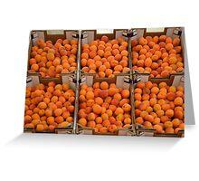 Italian apricots Greeting Card