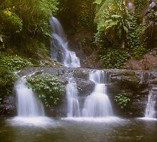 Elabana Falls, Lamington National Park by smallan
