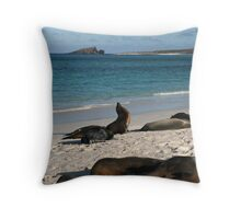 Sea Lions Lazing About Throw Pillow