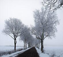 Winter by Peter Voerman