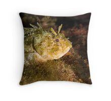 resting rockfish Throw Pillow