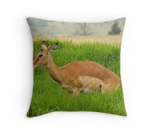 Impala Throw Pillow