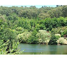 Mt Lofty Botanic Gardens Photographic Print