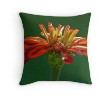 ready to dance Throw Pillow