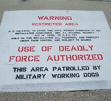 Unlawful by BShirey