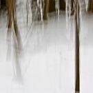 Saplings in Snow by Lynn Wiles