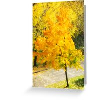 Autumn colorful maple Greeting Card