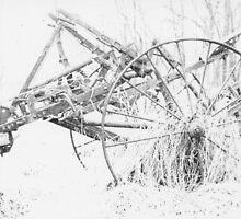 Farm Harrow by Liz Wolfe
