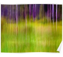 Mitchell Park ~ the impressionist's view I Poster