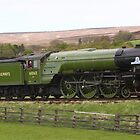 "60163 A1 Peppercorn - ""Tornado"" by Nick Barker"
