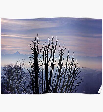 Blue velvet sunset Poster
