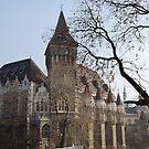 Vajdahunyad Castle by inglesina
