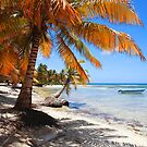 Caribbean beach with boat by Tom Prokop