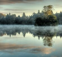 Misty Morning Lake by De-aRt
