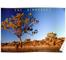 Sunset Tree, The Kimberley, Australian Outback Poster