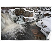 Manuels River in Winter Poster