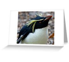 Rock Hopper Penguin Greeting Card