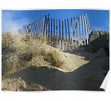 Fenced In - Biddeford Pool, Maine Poster