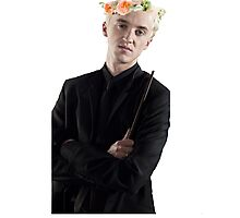 draco with flower crown Photographic Print