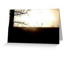 And all the lights that lead us there are blinding  Greeting Card