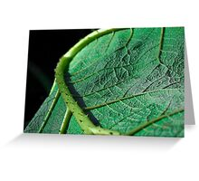 Prickly green leaf Greeting Card