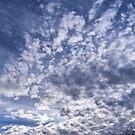 A Cloudy Day by NancyC