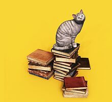 British Cat on a stack of books by Roberta Angiolani