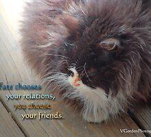 Friendship by vigor