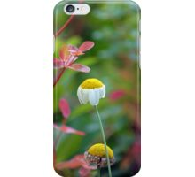 Sweet Daisy iPhone Case/Skin
