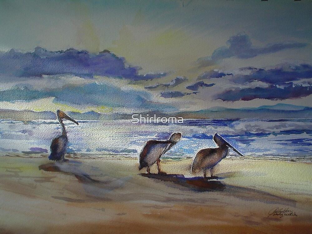 Dawn Watch Byron Bay www.shirleycharlton.com by Shirlroma