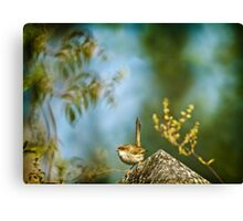 ~ a visitor in the garden ~ Canvas Print