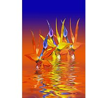 Tequila sunrise Photographic Print