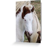 You Got The Cuttest Little Baby Face Greeting Card
