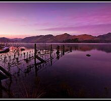 Purple dawn over Derwent water by Shaun Whiteman