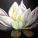 Lotus by Shirlroma